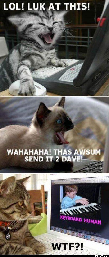 Lol!Luk at This.