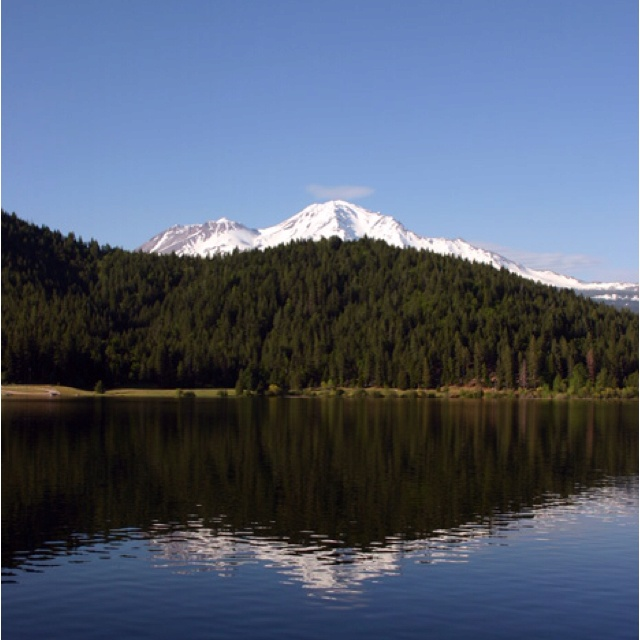 71 best lodging mt shasta area images on pinterest for Mount shasta cabins for rent