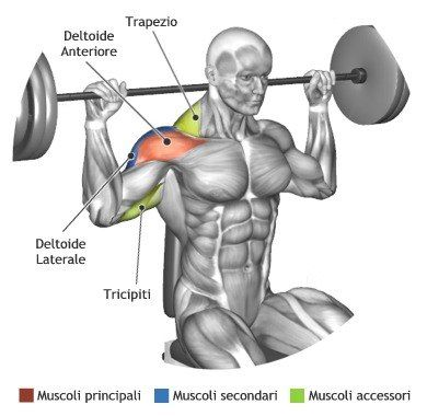 BarBell work out