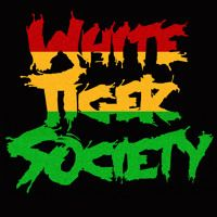 ELEVATION (MACROHARD REMIX) - WHITE TIGER SOCIETY by MACROHARD on SoundCloud