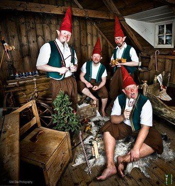Elf Tour Iceland