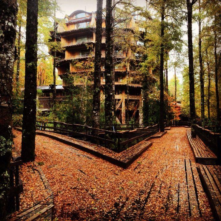 Nothofagus Hotel Spa in Neltume, Los Lagos - A seven story mega treehouse