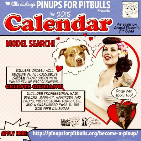 As we move further into the 2014 calendar year many of us are already planning for 2015.  The perfect example of this, are our friends over at Pinups for Pitbulls who are starting their 2015 model search.  As their 2014 Pinups calendars are selling out plans are in the works for next years fund raisers.