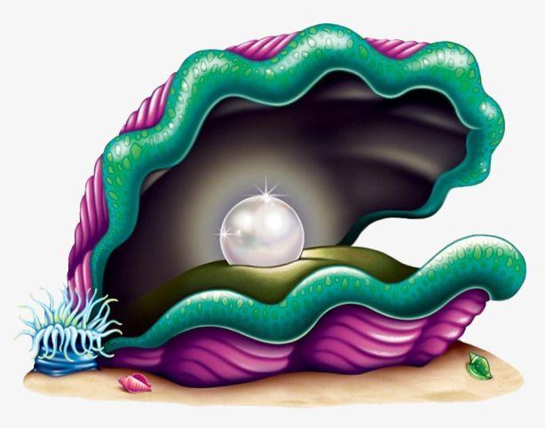 المحيط قاع البحر العالم تحت الماء الحياة البحرية كرتون غواصة الكرتون غواصة الكرتون شل لؤلؤ لعبة انمي Clams Giant Clam Clip Art