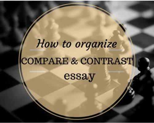 essay writing tips blog