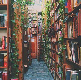 Wenn Du einen Bücherladen betrittst und alles kaufen willst, was du siehst.