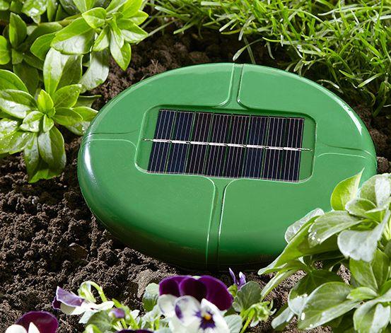 Solarny odstraszacz gryzoni #tchibo