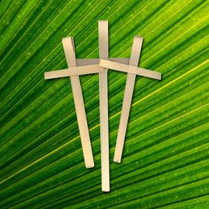 Make a Lenten Cross for Palm Sunday....directions and ordering information