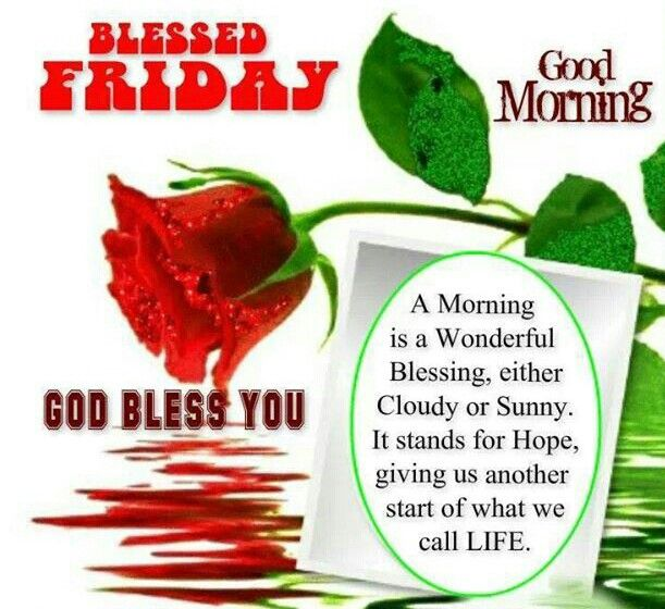 654 best friday blessings images on pinterest happy friday blessed friday good morning quote friday happy friday tgif good morning friday quotes good morning quotes friday quote good morning friday funny friday voltagebd Gallery