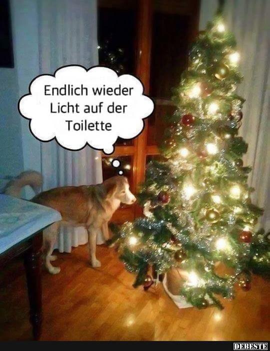 Endlich wieder Licht auf der Toilette.. | Lustige Bilder, Sprüche, Witze, echt lustig