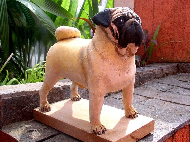 les 102 meilleures images du tableau chien sur pinterest. Black Bedroom Furniture Sets. Home Design Ideas