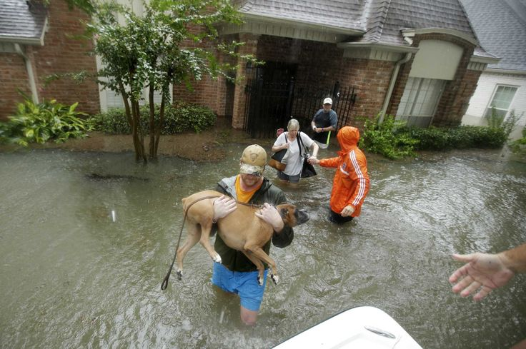 'Need help': Harvey victims use social media when 911 fails
