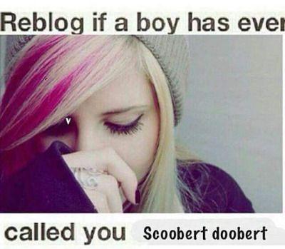 I suppose I am a liar. No one, neither boy nor girl, man nor woman, has ever had the pleasure of calling me Scoobert doobert.