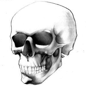 Easy Skull Drawings | SimpleInfluence (Hg) on deviantART
