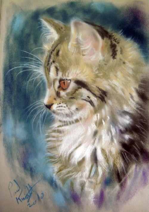 Английский художник Пол Найт. Кошки. 1 часть   Paul Knight (45 работ)