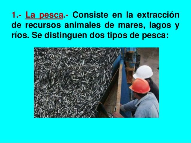 1.- La pesca.- Consiste en la extracción  de recursos animales de mares, lagos y  ríos. Se distinguen dos tipos de pesca: