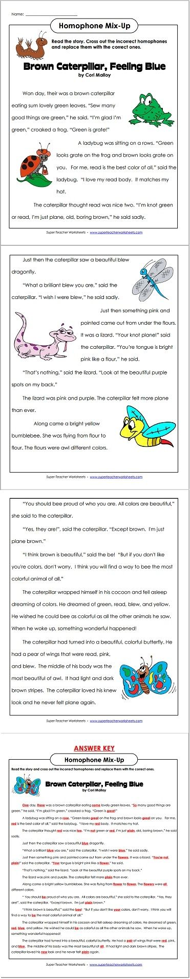 Check out this clever homophone mix-up reading passage!