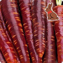 Морковь Шоколадный заяц F1, 0,1 г