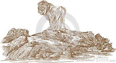 Lion and rocks ,vector line art