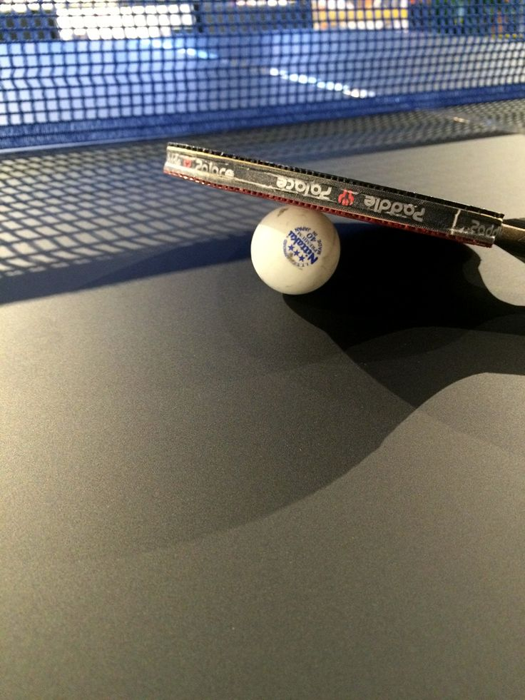 Ping Pong table made of FENIX NTM.