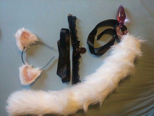 First Kitten Set!
