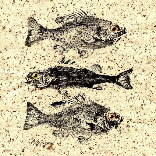 Fish rubbing... GYOTAKU ... original 2 bluegills and a perch on natural paper cottage decor: Fish Rubbing, Ipad Nearby, Fish Prints, Cottage Decor, Http Splashtablet Com Rap, Original, Paper Cottage, Natural Paper