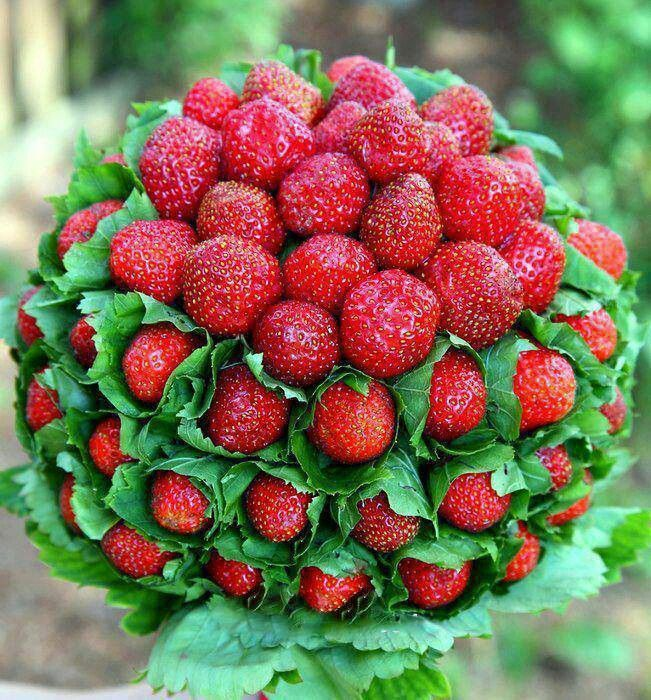 strawberry bouquet food pinterest strawberries and