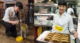 Dogs Trust has launched the MicroChippy, an exclusive canine cafe to raise awareness of the upcoming change in microchipping legislation on April 6th, when all dog owners in England, Wales and Scotland must have their pets microchipped and ensure register