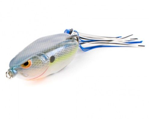 Spro bronzeye shad the newest thing to be hatched from for Bass fishing tips