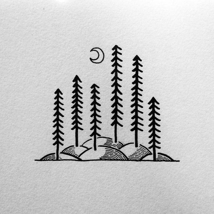 Doodling all night! #drawing #art #penandink #micron #illustration #illustree #sketchbook #pnw #upperleftusa #portland #oregon #trees #linework #tattoodesign #tattoo #design #graphicdesign #keepitsimple #illustrator #campvibes #rei1440project #camping #forest #doodle #doodling #sketch #doodles by david_rollyn