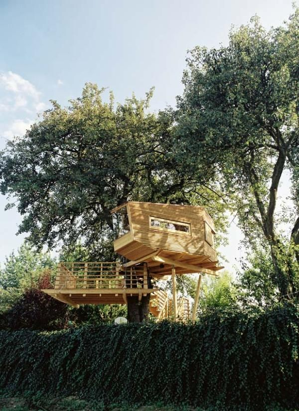 Future Tree Houses 364 best treehouse images on pinterest | architecture, treehouses