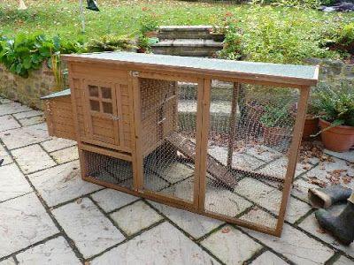 Планы куриного дома: истины о строительстве курятника