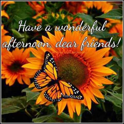 good afternoon good afternoon blessings pinterest