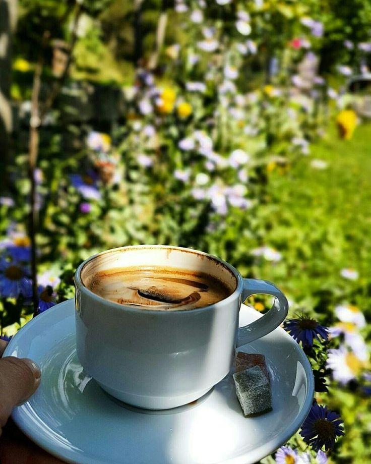 Фото кофе на природе летом