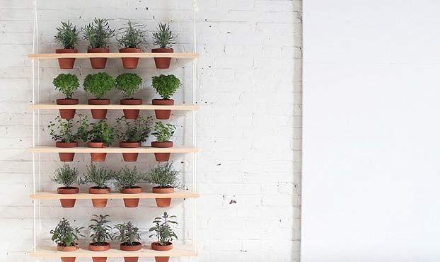 Come realizzare un giardino pensile verticale fai da te terrazza pinterest fai da te - Come realizzare un giardino verticale ...