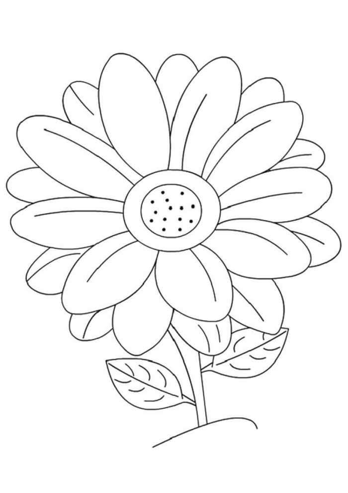 Daisy Coloring Pages Best Coloring Pages For Kids Printable Flower Coloring Pages Flower Coloring Pages Flower Stencils Printables