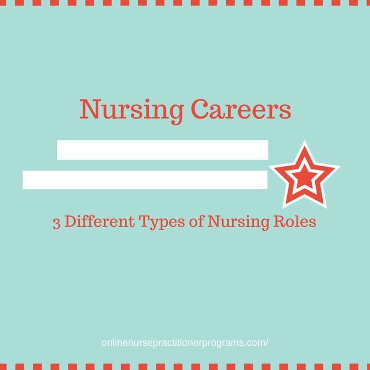 299 best nursing schools images on pinterest | nursing schools, Sphenoid