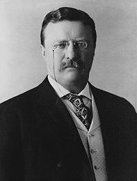 "President Theodore Roosevelt, 1904.jpg セオドア・""テディ""・ルーズベルト・ジュニア(英語: Theodore ""Teddy"" Roosevelt, Jr.、発音: [ˈθiːəˌdɔːr ˈroʊzəˌvɛlt][1][2][3]、1858年10月27日 - 1919年1月6日)は、アメリカ合衆国の軍人、政治家であり、第25代副大統領および第26代大統領。第32代大統領フランクリン・ルーズベルトは従弟(12親等)に当たる。彼はその精力的な個性、成し遂げた業績と合衆国の利益、国の発展期に示したリーダーシップと、「カウボーイ」的な男性らしさでよく知られる。共和党のリーダーおよび、短命に終わった革新党の創設者であった。大統領就任までに市、州、連邦政府での要職に在籍した。彼はまた政治家としての業績と同じくらい、軍人、作家、狩猟家、探検家、自然主義者としての名声も併せ持つ。"