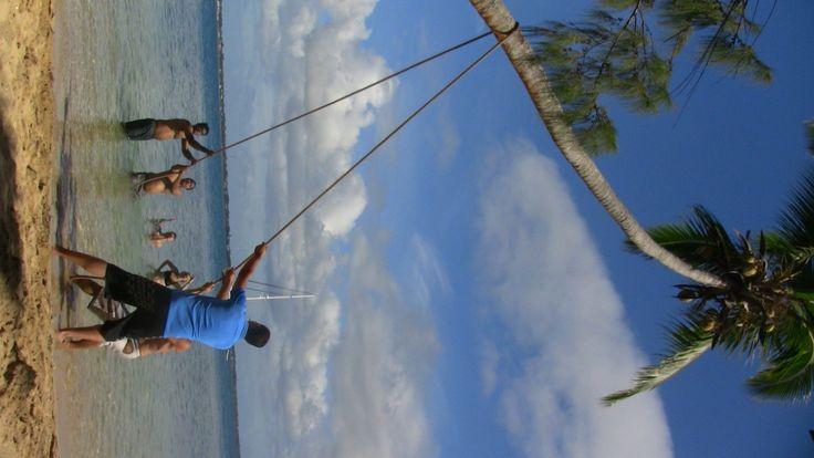 Quelques noix de coco pour étancher nos soifs à Pangaimotu, #Tonga