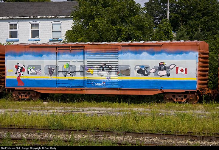 RailPictures.Net Photo: VIA Rail box car at Woodstock, Ontario, Canada by Ron Cady