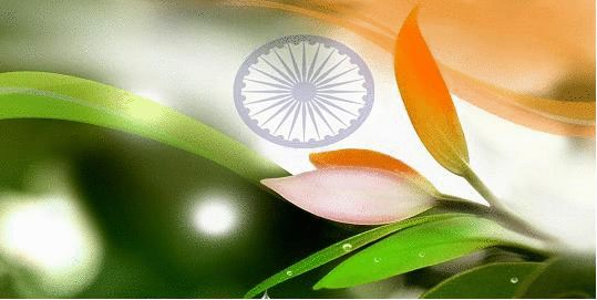 Independence Day – observed annually on 15 August, is a National Holiday in India celebrating the nation's independence from the British Empire on 15 August 1947. Independence means free from outside control; not depending on other for livelihood or subsistence. What is independence according to you? Let us know what do you think of Independence. The writing with the maximum likes wait for a surprise. Contest ends on 31st August 2015.