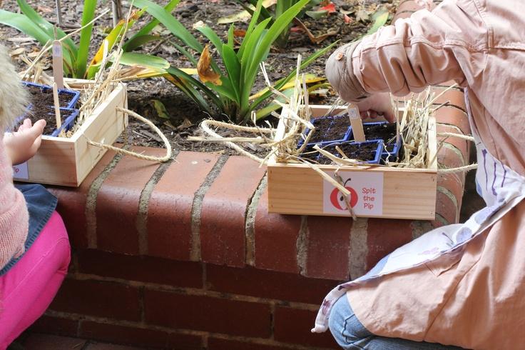 Kitchen Garden Educators Spit the Pip running a mini decorators workshop at Beautiful Room.  www.beautifulroom.com.au