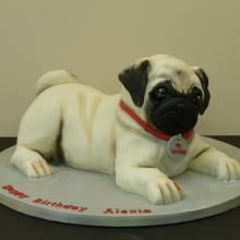 Pug Cake by Cakes 4 Fun Ltd