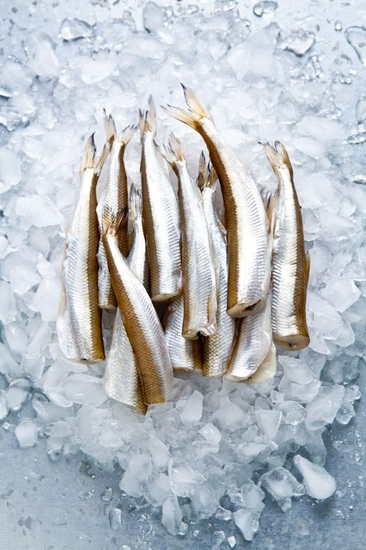 Tartelette's Pan Seared Smelts. I chose to pin the picture of the raw fish because it is stunning.