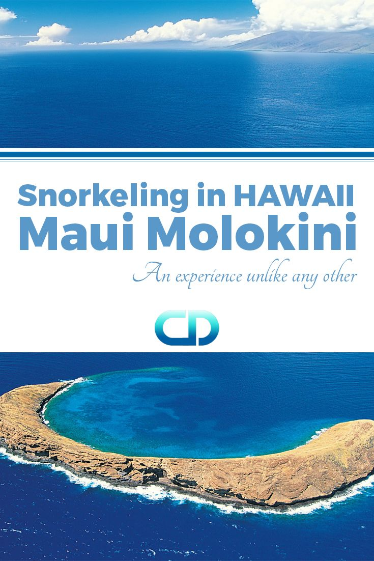 Experience an adventure unlike any other. This is how we would describe snorkelling at Molokini.
