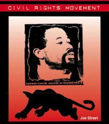 The Culture War In The Civil Rights Movement PDF