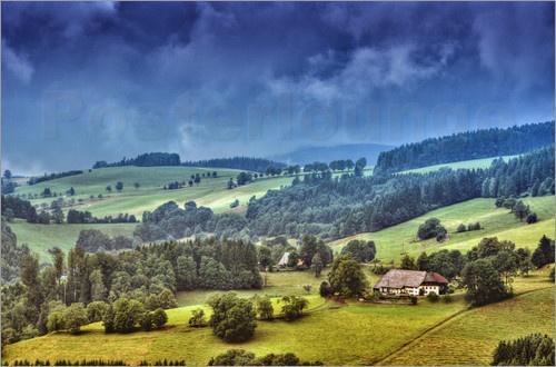 bei St. Märgen / Schwarzwald