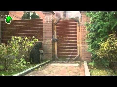 Bouvier des Flandres (фландрский бувье). - YouTube