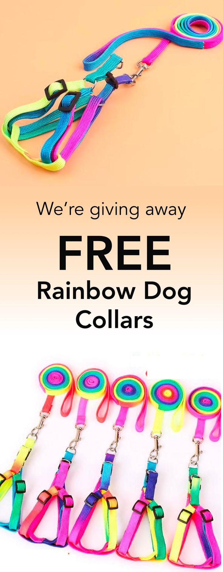 FREE Adjustable Rainbow Leash + Collar Harness