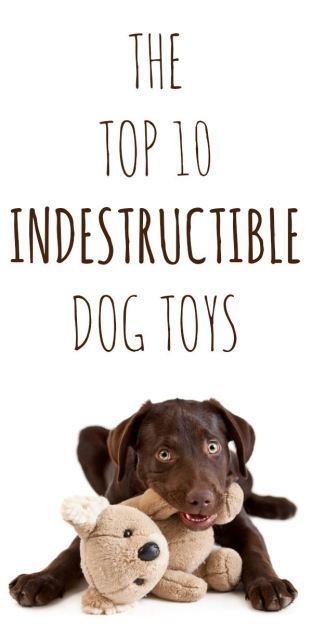The Top 10 Truly Indestructible Dog Toys - tried and true. Maybe even a great Christmas gift idea for your dog!